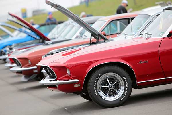 Ford Mustang les 50 ans